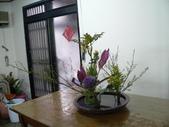 輕鬆的寫景花:P1430315 (800x600).jpg