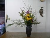 瓶花----多種插:P1430382 (800x600).jpg