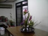 輕鬆的寫景花:P1430282 (800x600).jpg