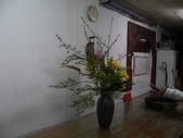 瓶花----多種插:P1430370 (800x600).jpg