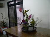 輕鬆的寫景花:P1430306 (800x600).jpg