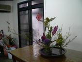 輕鬆的寫景花:P1430297 (800x600).jpg