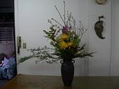 瓶花----多種插:P1430372 (800x600).jpg