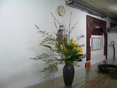 瓶花----多種插:P1430389 (800x600).jpg