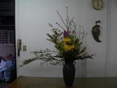 瓶花----多種插:P1430373 (800x600).jpg