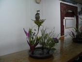 輕鬆的寫景花:P1430299 (800x600).jpg