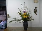 瓶花----多種插:P1430395 (800x600).jpg