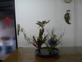 輕鬆的寫景花:P1430311 (800x600).jpg