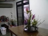 輕鬆的寫景花:P1430291 (800x600).jpg