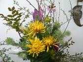 瓶花----多種插:P1430397 (800x600).jpg