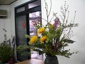 瓶花----多種插:P1430400 (800x600).jpg