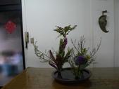 輕鬆的寫景花:P1430302 (800x600).jpg