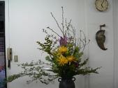 瓶花----多種插:P1430402 (800x600).jpg