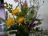 瓶花----多種插:P1430376 (800x600).jpg