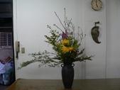 瓶花----多種插:P1430364 (800x600).jpg