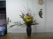 瓶花----多種插:P1430404 (800x600).jpg