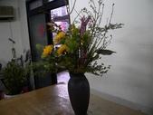瓶花----多種插:P1430377 (800x600).jpg