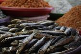 總是鮮味十足的梧棲漁港:總是鮮味十足的梧棲漁港012.jpg