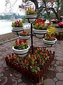 擁擠又吵雜的河內遊:四方湖邊有花&風景文化照片等~大力宣傳越南的美
