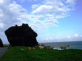 蘭嶼之風景人文篇:繞著繞著~ 龍頭岩與羊咩咩出現了
