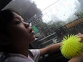 阿里山、竹崎、斗六之旅:雨日車中剪影 (1).JPG