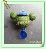 水族水草:IMG_2586.JPG