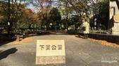 2017【名古屋自駕之洗腎也能自由行】DAY2:38.jpg