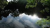 湖畔花時間:10.jpg