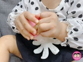 台灣樂貝特:peipie_img_201222426.JPG