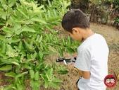 顯微鏡:jun&chen_img_021025510.JPG