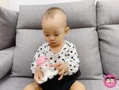 台灣樂貝特:peipie_img_201222414.JPG