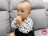 台灣樂貝特:peipie_img_201222422.JPG