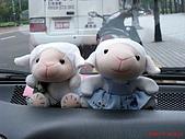 97.11.08台中婚宴 & 高雄:阿泰車上的小羊