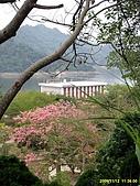 98.11.12 vilavilla 山居印象農莊:鯉魚潭水庫風景-3