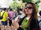97.05.19 峇里島第三天:來吧!!可愛的海龜~親一個~~