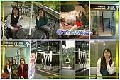 96.11.21動物園&貓纜之旅:476.jpg