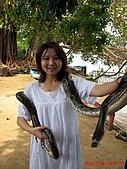 97.05.19 峇里島第三天:大膽的嘉敏~~我不敢跟蛇合照~~