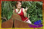 94.05.07~8 六寮古道油桐花:甲蟲