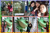 96.11.21動物園&貓纜之旅:474.jpg