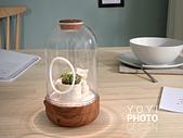 greenpandora精品綠植盆栽:居家商品攝影-情境攝影
