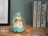 greenpandora精品綠植盆栽:居家商品攝影