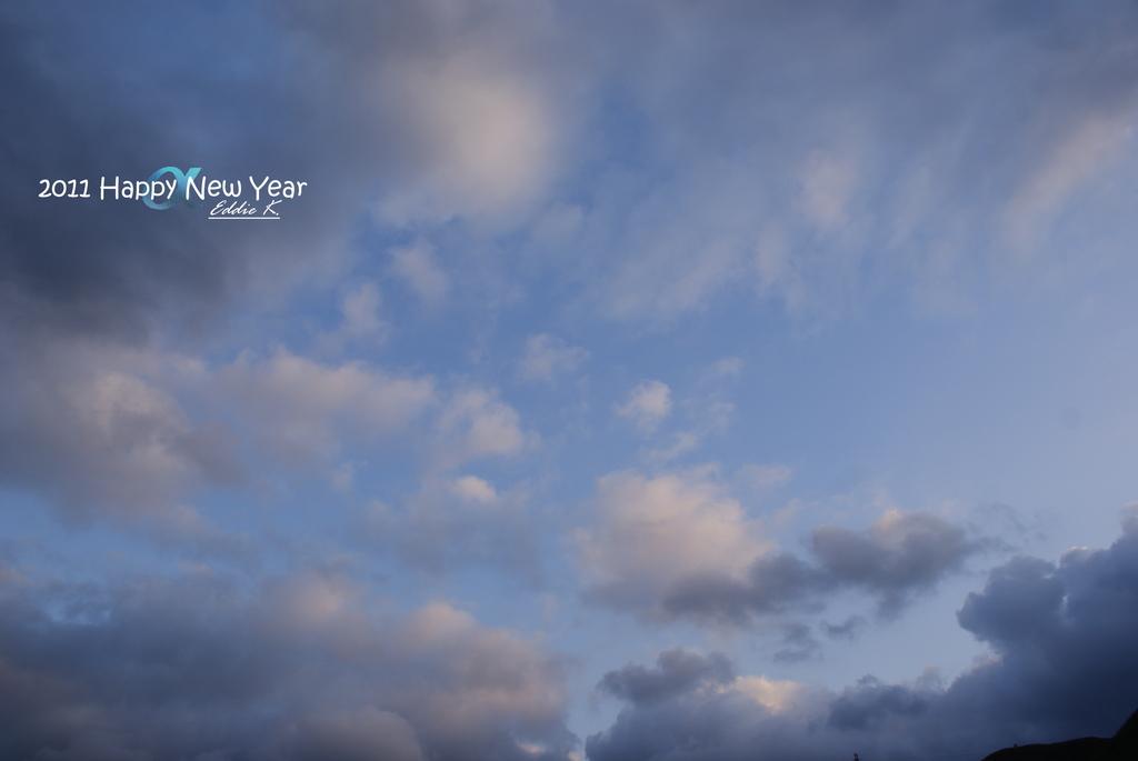 2011 Happy New Year:DSC06261.JPG