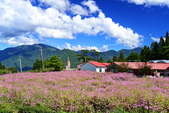 秋遊福壽山農場: