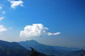 茶香自深山、林內有禪境:2012.01.28竹山-深山林內農場