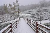 世紀大雪~山上人家: