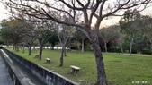 三坑自然生態公園野營109.2/20~21:DSC_0047.jpg