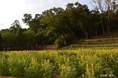 三坑自然生態公園野營109.2/20~21:DSC_0040.jpg