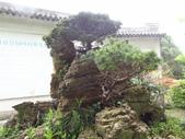 中國2:溫州江心嶼27.JPG