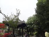中國2:溫州江心嶼31.JPG