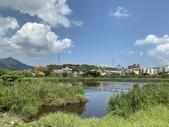 台北:關渡自然公園31.JPG